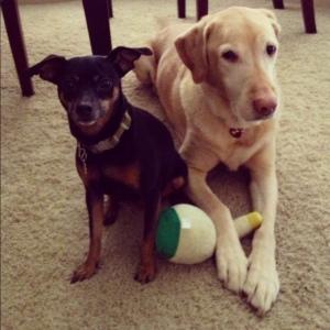 Ella + Chance: Sibling love.